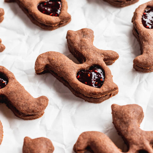 chocolate chai shortbread cookies shaped like squirrels